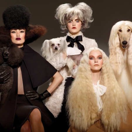 Image Attribution Source: https://www.maccosmetics.com/media/export/cms/collections/haute_dogs_colour/HD-collection-beauty-mobile-desktop_navpoint-640x640.jpg