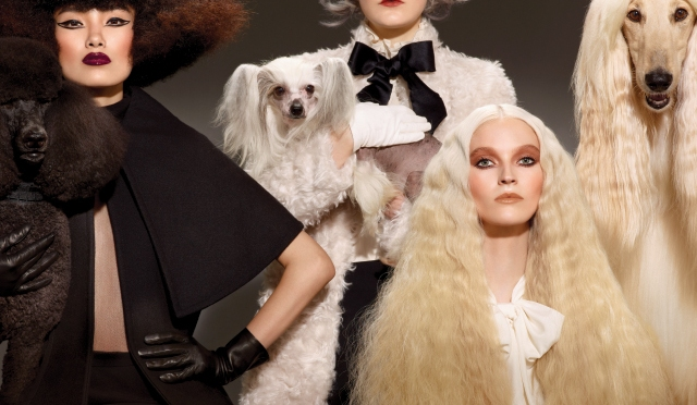 http://ow.ly/QSZmc Woof what MAC barked up?akeup